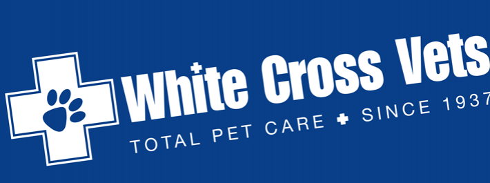 White Cross Vets – Introduce A Friend Poster Campaign